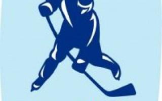 Преимущества и недостатки ставок на хоккей.